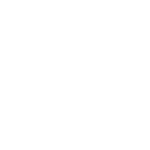 GSF Commodity